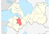 Гатчинский район