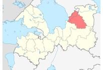 Лодейнопольский район